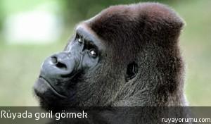 Rüyada Goril Görmek