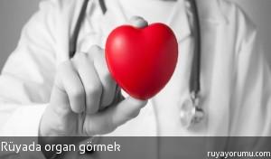 Rüyada Organ Görmek